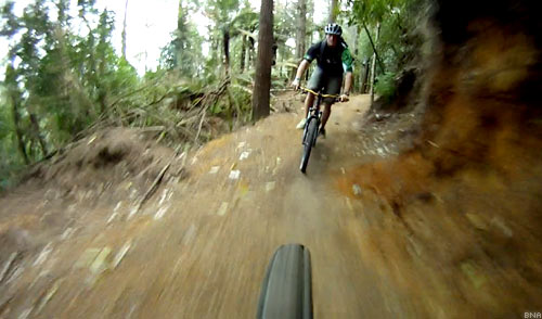 Downhill Mountain Bike in Rotorua