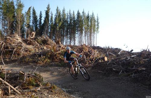 Single Track Craters Mountain Bike