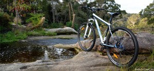 Reid Cycles Xenon 29er MTB