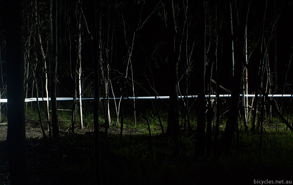 Speedwolf MTB Night Ride