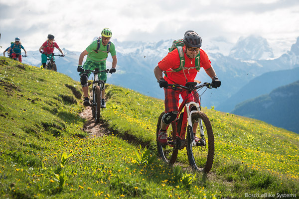 emtb e mountain bike