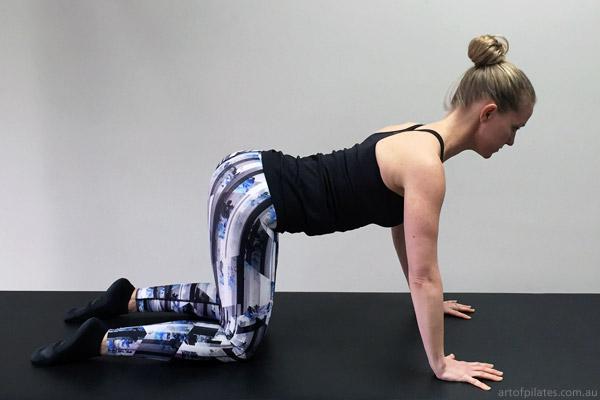 cycling pilates cat stretch flexion